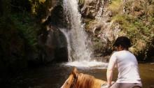 Equestres alberta